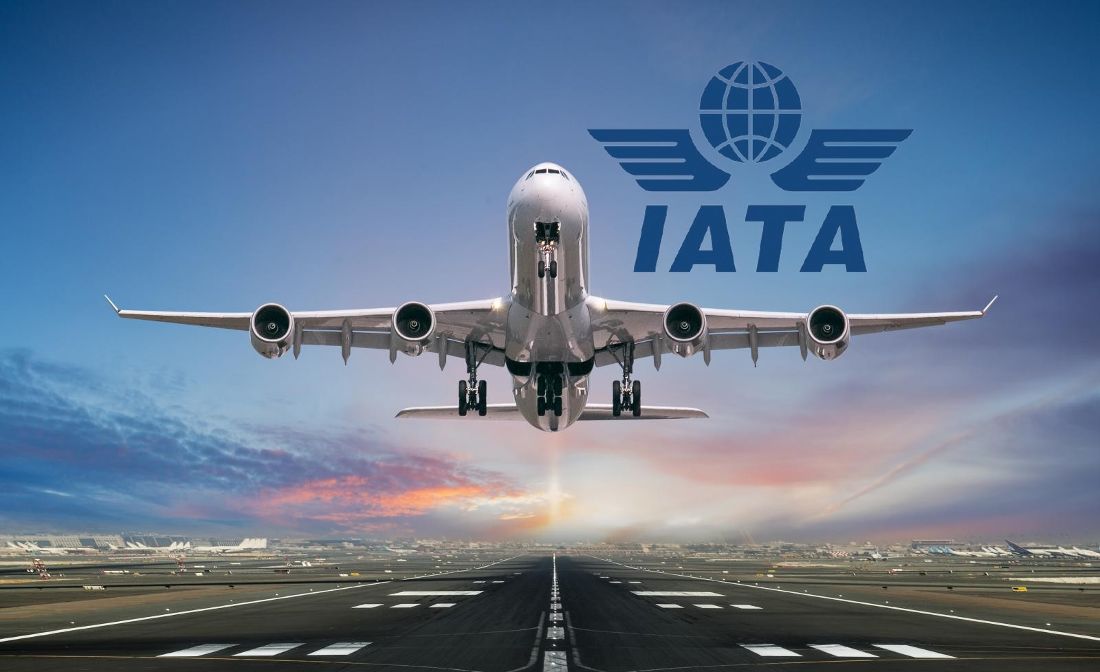 Aircraft and IATA logo