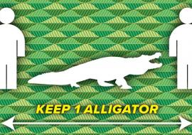 one alligator away sign in Leon county, Florida