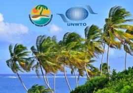 palm trees, beach, CTO and UNWTO logos